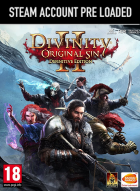 Divinity: Original Sin 2: Definitive Edition Steam Pre Loaded Account