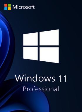 Windows 11 Professional Retail Key
